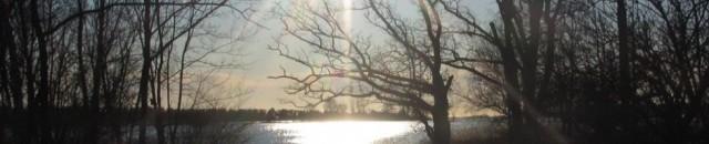 cropped-031kopkop3.jpg