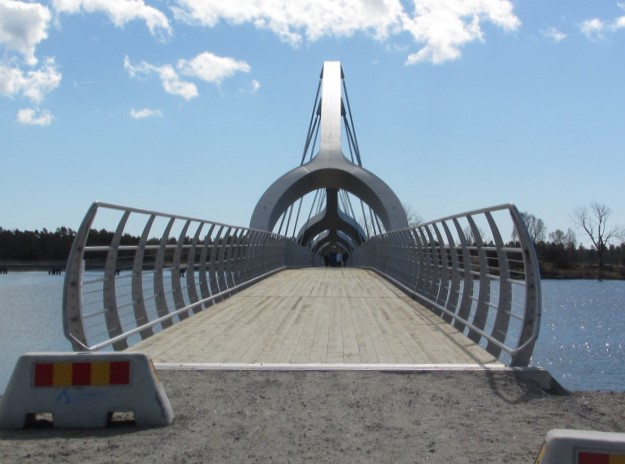 bron11 (2)