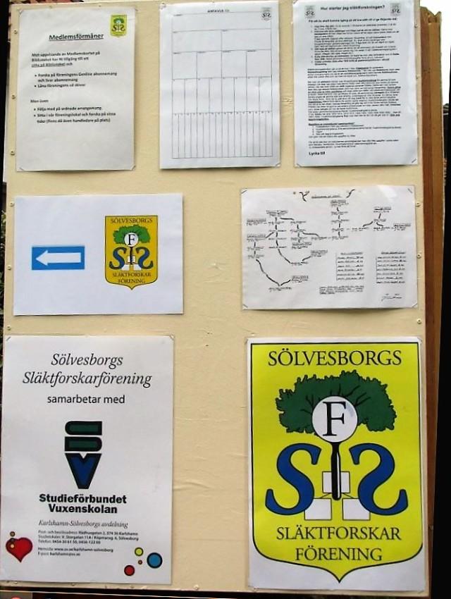 SSF3 (2)
